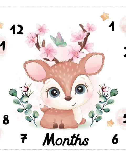 שמיכת צילום , שמיכת חודשים , תיעוד תינוק , מתנת לידה , תיעוד חודשי תינוקות , מתנה לתינוקות , מתנה לתינוק , מתנה לתינוקת , שמיכת צילום לתינוקות , שמיכת חודשים לתינוקות , צילום תינוקות , צילומי ניו בורן , צילומי תינוקות